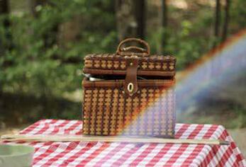 Be Parklife picnic
